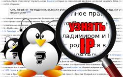 Как быстро узнать IP адрес в Linux